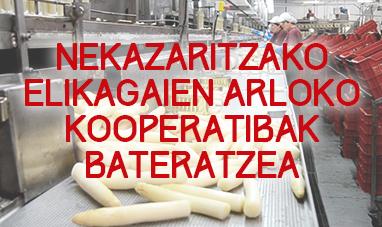 Integración cooperativa agroalimentaria